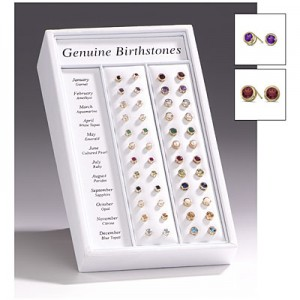 12 Month Double Bezel Stud Earring Display